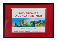 2013 Premier Agency Partner Award