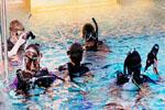 SeaTrek Scuba Diving