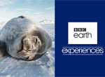 BBC Earth Experiences