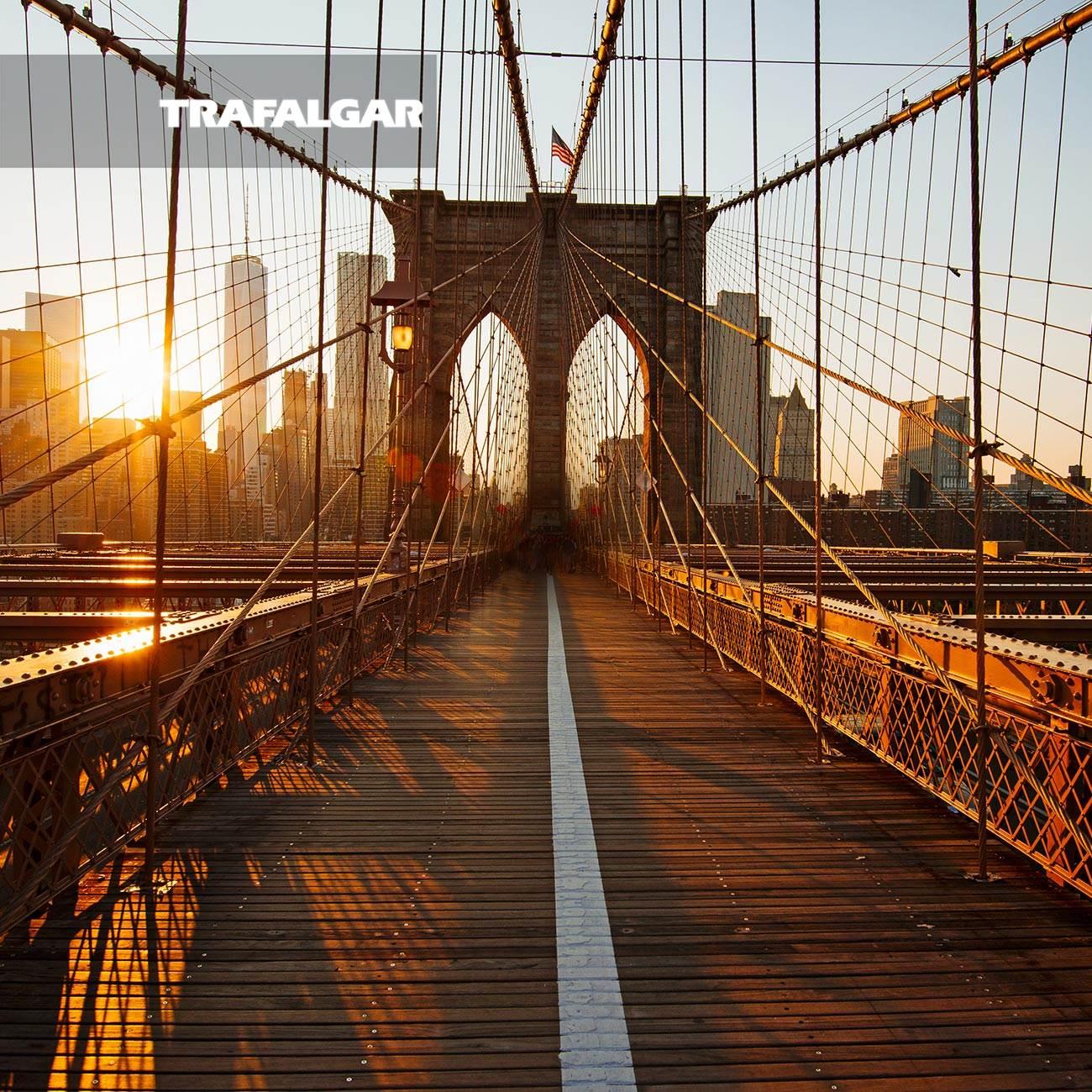 new york explorer 2022trafalgar tours with 3956 reviews