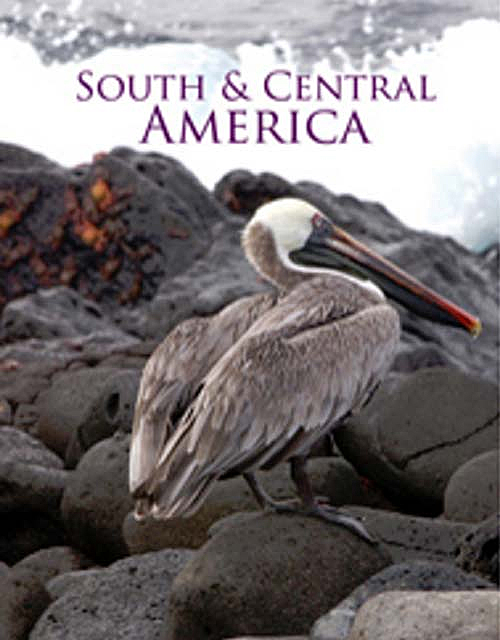 South and Central America Image