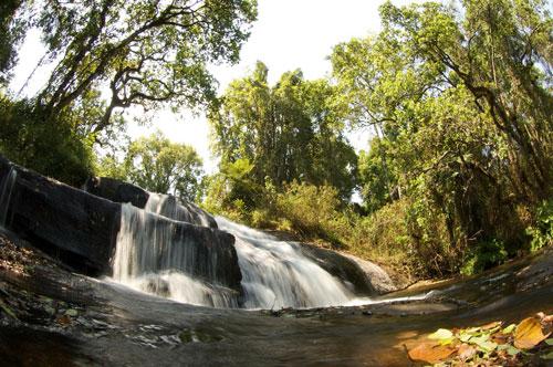 Malawi Image