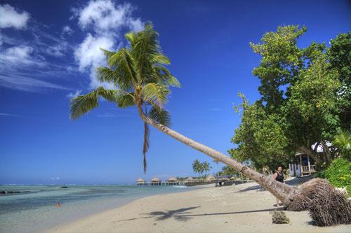 Samoa Image