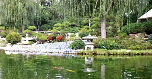 Visit the Earl Burns Miller Japanese Garden