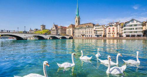 Discover Lively Zürich