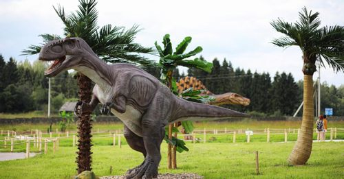 Visit Dinosaur World