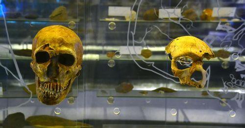 Learn Kenyan history at National Museum, Nairobi, Kenya
