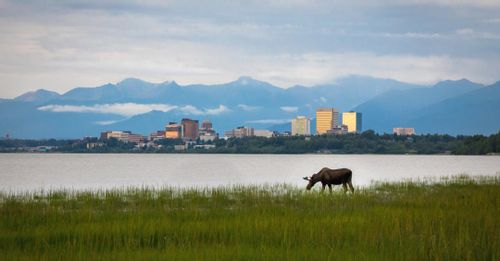 Explore Anchorage