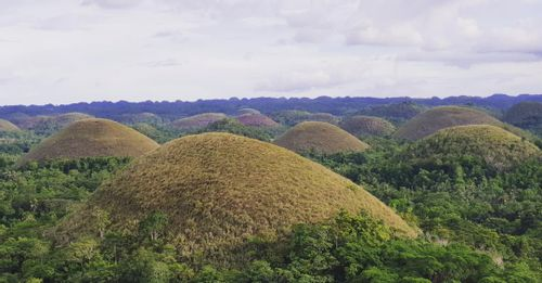 View the jaw-dropping Chocolate Hills