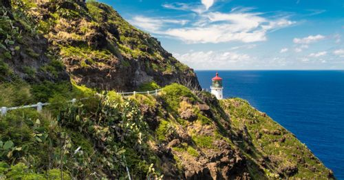 Check out the Makapu'u Point Lighthouse Trail