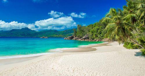 Visit Beachcomber Island