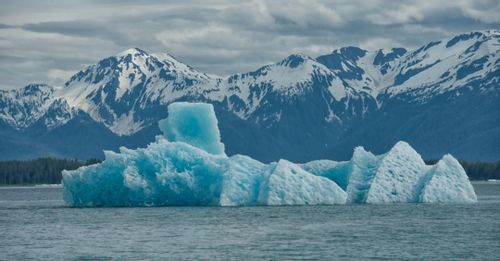 2. Cruise Tracy Arm, Juneau, and Glacier Bay