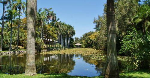 Visit the Bonnet House Museum & Gardens