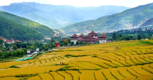 Attend the daily flag ceremony held at the Tashichho Dzong