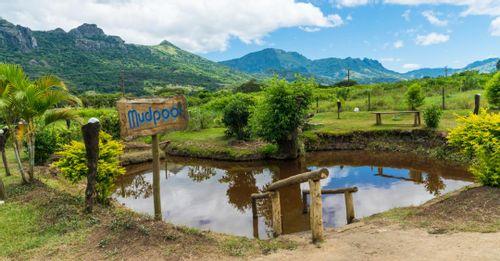 Sabeto Thermal Mud Pool & Hot Springs