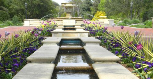 Stroll through the Norfolk Botanical Garden
