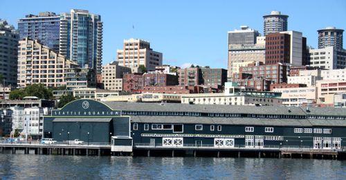 Check out the Seattle Aquarium