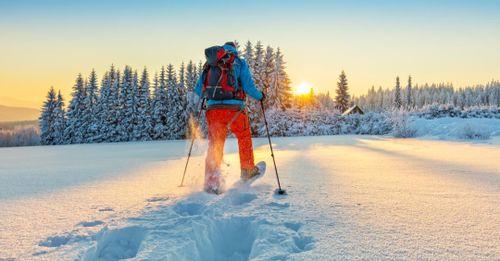 Go snowshoeing