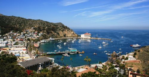 Take a trip to Santa Catalina Island