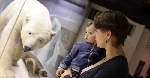 Learn at the Polar Museum