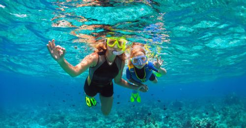 Swim alongside the marine life when you go snorkeling in Bonito