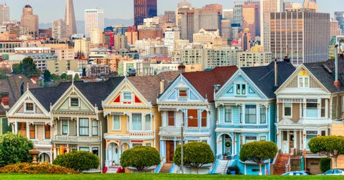 See the famed Painted Ladies