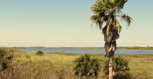 Relax at Galveston Island State Park