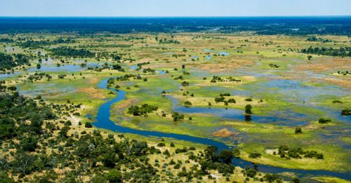 Explore one of the Seven Natural Wonders of Africa at the Okavango Delta