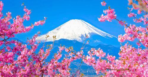 See Mount Fuji