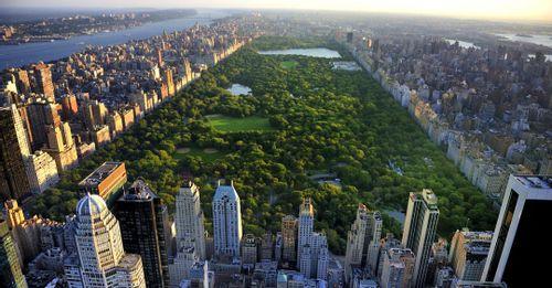 Walk around Central Park