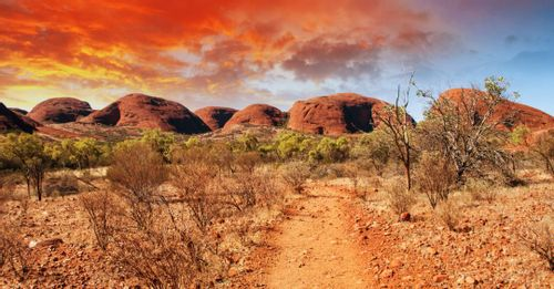 Explore the Australian Outback on the Ghan Train transcontinental journey