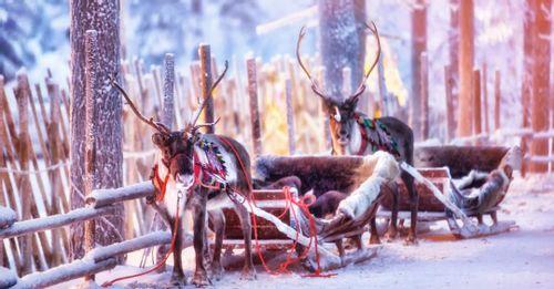 Lapland - The Ice Hotel
