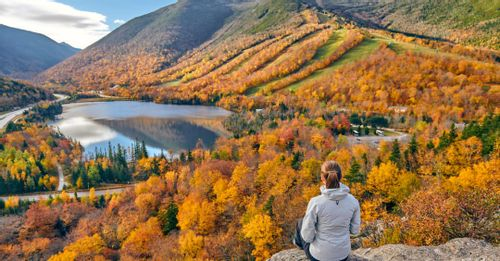Check out the fall foliage in America's northeast