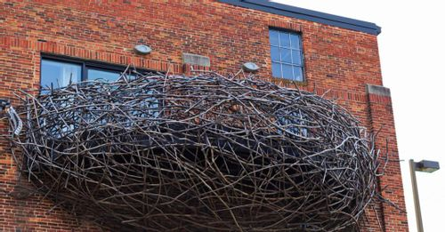 Check out the American Visionary Art Museum