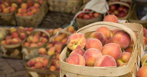 Go to the Charleston Farmers Market