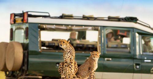 Serengeti Game Reserve