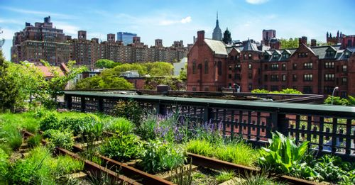 Visit the High Line